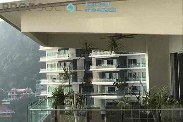 Condominium For Rent in The Cove, Tanjung Bungah Freehold Fully Furnished 5R/6B 9.5k