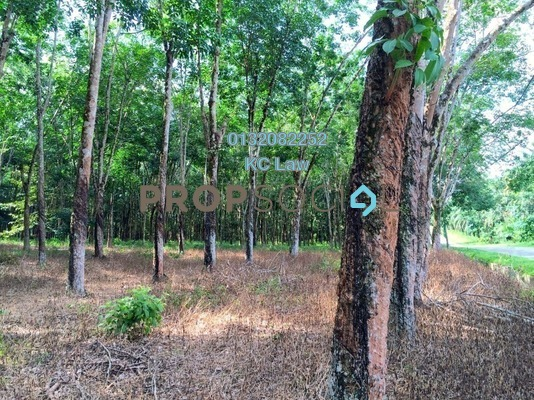For Sale Land at Taman Tasik Semenyih, Semenyih Freehold Unfurnished 0R/0B 22m