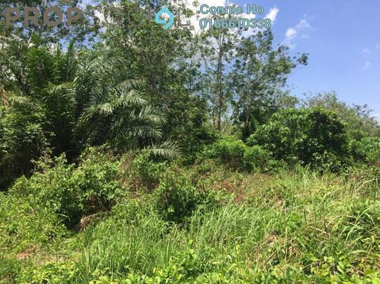 Land For Sale in Kepis Eco Valley, Kuala Pilah Freehold Unfurnished 0R/0B 1.8m
