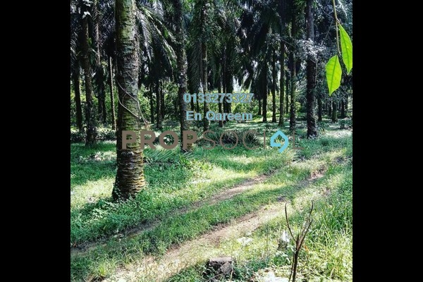 Land For Sale in Tamu Hill Park, Batang Kali Freehold Unfurnished 0R/0B 1.5m