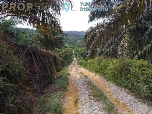 Land For Sale in Taman Pengkalan Makmur, Taiping Freehold Unfurnished 0R/0B 65k