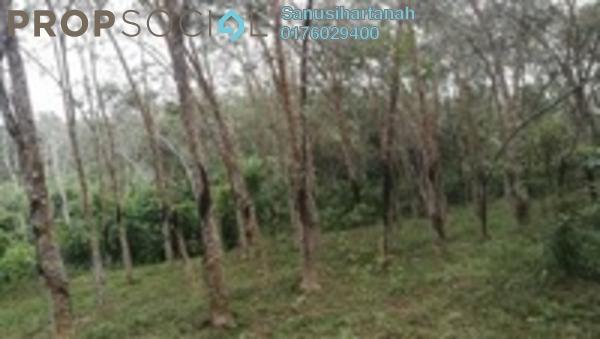 Land For Sale in Bukit Desa Semantan, Temerloh Freehold Unfurnished 0R/0B 251k