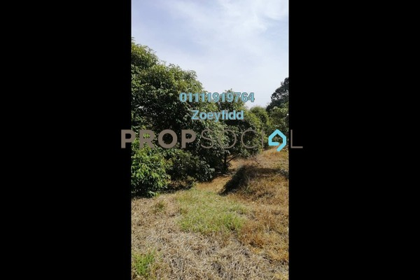 Land For Sale in Tras, Raub Freehold Unfurnished 0R/0B 2m
