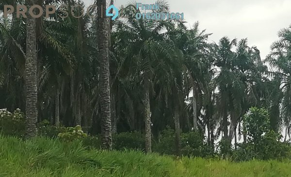 Land For Sale in Jalan Mersing, Mersing Freehold Unfurnished 0R/0B 54.8m