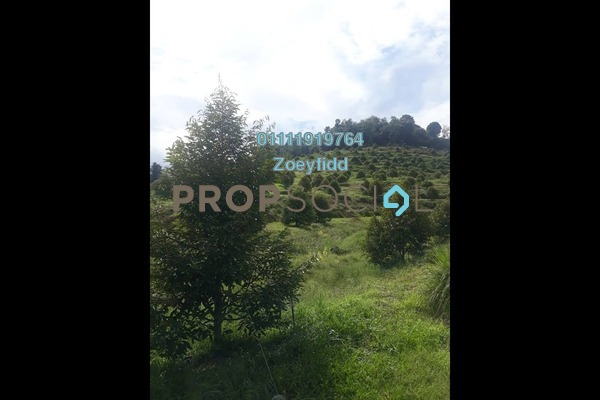 Land For Sale in Kampung Kijang, Kuala Lipis Freehold Unfurnished 0R/0B 38.3m