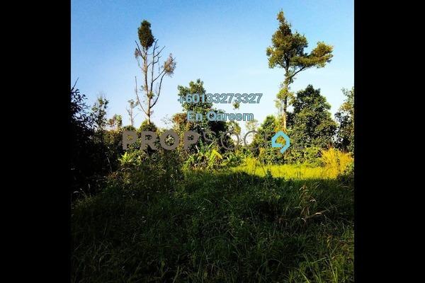 Land For Sale in Ulu Yam Perdana, Batang Kali Freehold Unfurnished 0R/0B 2.2m