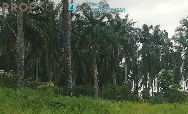 Land For Sale in Jalan Mersing, Mersing Freehold Unfurnished 0R/0B 54.8m