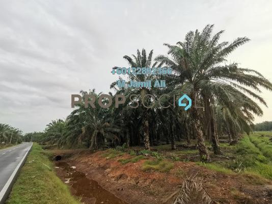 Land For Sale in Kampung Parit Kasan, Bukit Gambir Freehold Unfurnished 0R/0B 800k