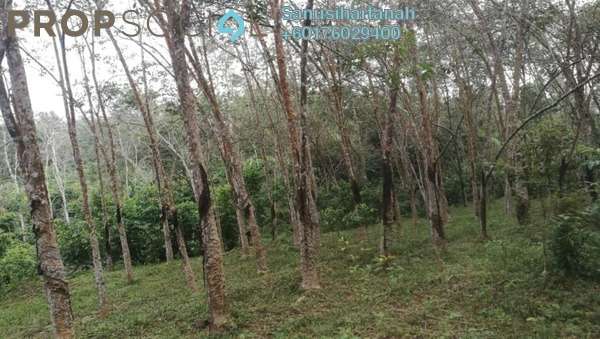 Land For Sale in Taman Perindustrian Temerloh, Temerloh Freehold Unfurnished 0R/0B 251k