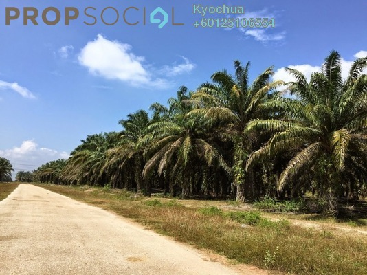 Land For Sale in Gopeng Light Industrial Park, Gopeng Freehold Unfurnished 0R/0B 624k