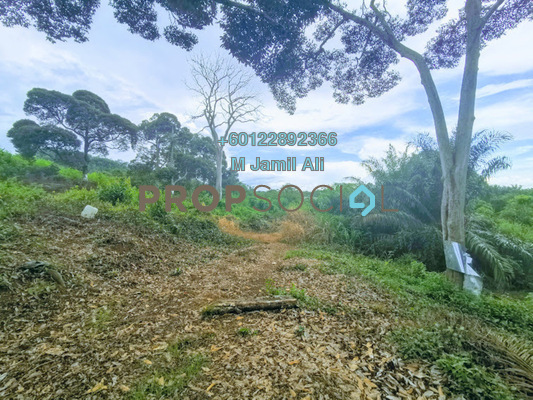 Land For Sale in Bukit Kepong, Muar Freehold Semi Furnished 0R/0B 620k