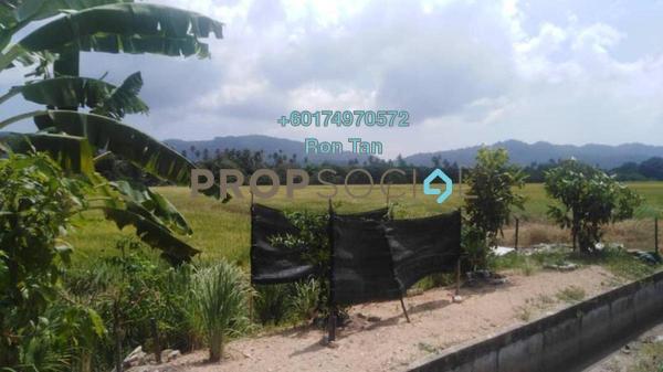 Land For Sale in Sungai Burung, Balik Pulau Freehold Unfurnished 0R/0B 4.95m