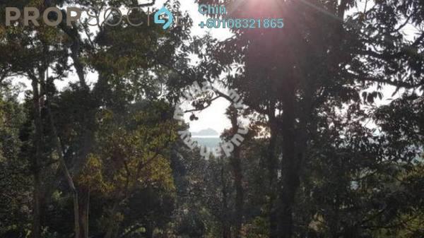 Land For Sale in Bukit Genting, Balik Pulau Freehold Unfurnished 0R/0B 13.1m