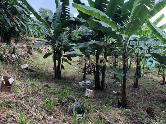Land For Sale in Kampung Baru Subang, Shah Alam Freehold Unfurnished 0R/0B 3.8m