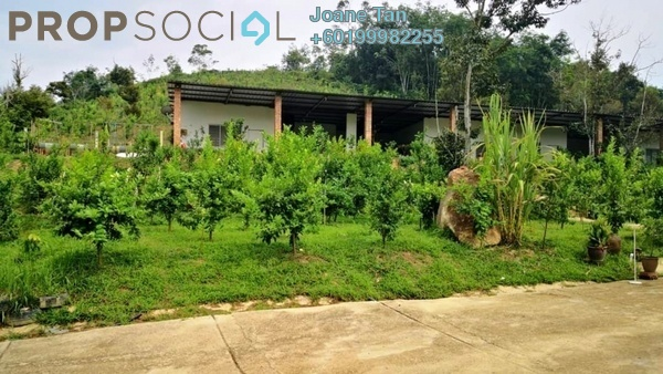 Land For Sale in Sang Lee Village, Raub Freehold Fully Furnished 4R/4B 990k