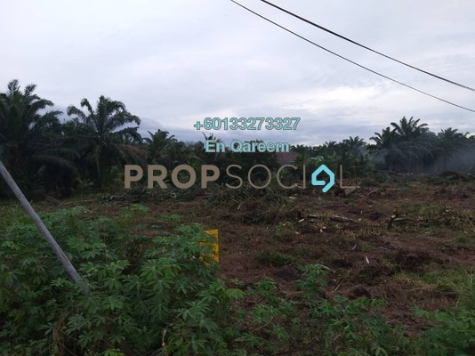 Land For Sale in Kampung Olak Lempit, Banting Freehold Unfurnished 0R/0B 1.6m
