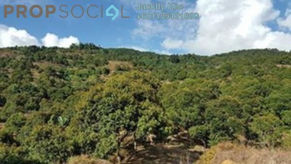 Land For Sale in Kampung Kijang, Kuala Lipis Freehold Fully Furnished 0R/0B 150k