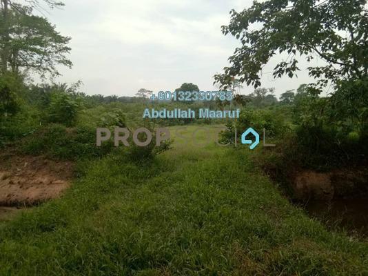 Land For Sale in Kampung Baharu Labu Lanjut, Sepang Freehold Unfurnished 0R/0B 290k