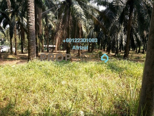 Land For Sale in Kuang, Selangor Freehold Unfurnished 0R/0B 1.28m