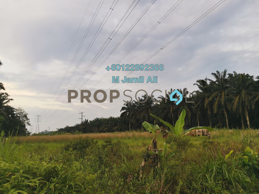 Land For Sale in Taman Chaah Baru, Chaah Freehold Unfurnished 0R/0B 320k