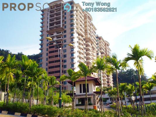 Condominium For Rent in Alila Horizon, Tanjung Bungah Freehold Fully Furnished 3R/2B 2.5k