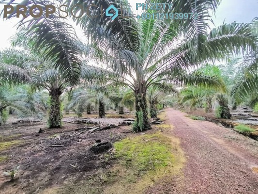 Land For Sale in Taman Chaah Baru, Chaah Leasehold Fully Furnished 0R/0B 280k