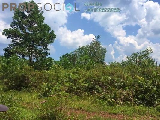 Land For Sale in Sungai Rengit, Pengerang Freehold Unfurnished 0R/0B 200k