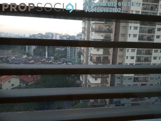 SoHo/Studio For Rent in Pinnacle, Kelana Jaya Freehold Semi Furnished 0R/1B 1.4k