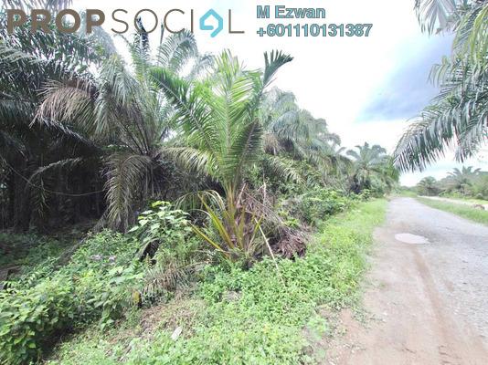 Land For Sale in Kampung Bukit Cheeding, Banting Freehold Unfurnished 0R/0B 850k