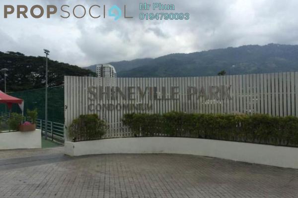 Shineville  1  20170331102531 v2u98hntzlexlzvkupy8 small