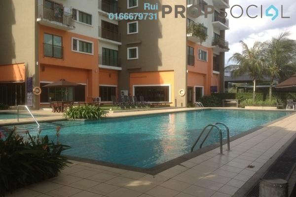 Swimming pool h eq6d8slptazubcyme2 small