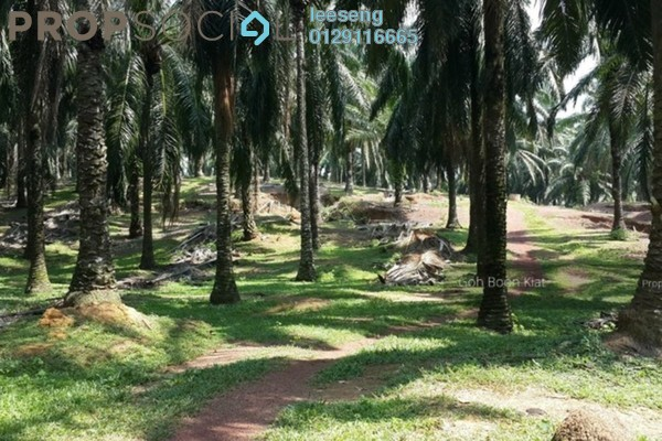 Land For Sale in Bukit Desa Semantan, Temerloh Freehold Unfurnished 0R/0B 1m
