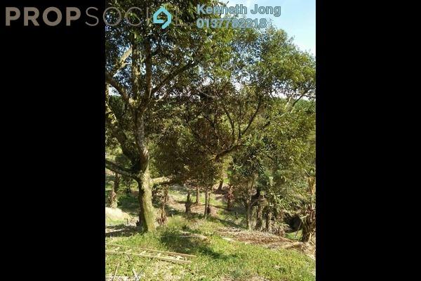 Land For Sale in Kampung Sungai Klau, Raub Freehold Unfurnished 0R/0B 3.2m