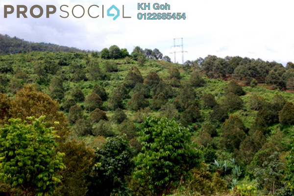 Land For Sale in Tras, Raub Freehold Unfurnished 0R/0B 70k