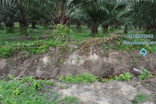 For Sale Land at Bagan Lalang, Sepang Freehold Unfurnished 0R/0B 260k