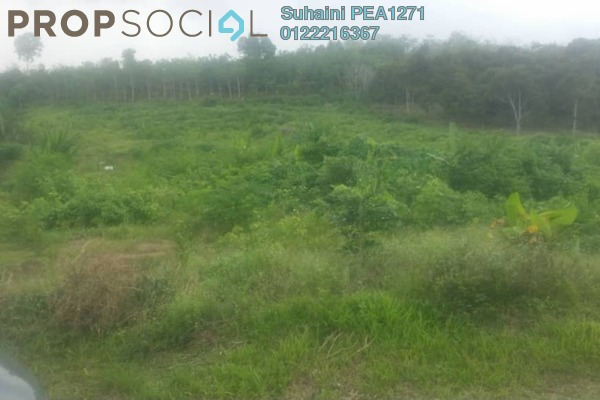 Land For Sale in Kampung Chenderah, Jasin Freehold Unfurnished 0R/0B 1.85m