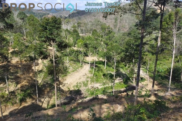 Land For Sale in Kuala Klawang, Jelebu Freehold Unfurnished 0R/0B 288k