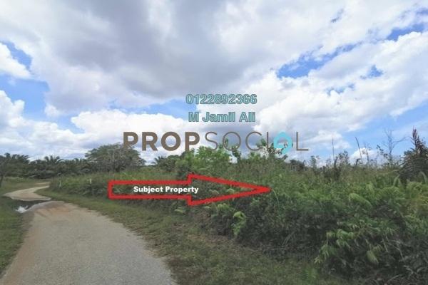 Land For Sale in Felda Ayer Tawar Lima, Ayer Tawar Freehold Unfurnished 0R/0B 550k