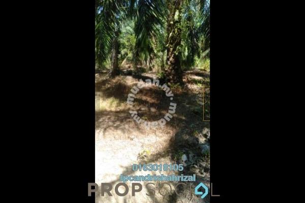 Land For Sale in Kampung Batu 2 Sepintas, Sabak Bernam Freehold Unfurnished 0R/0B 280k
