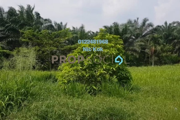 Land For Sale in Jenjarom, Selangor Freehold Unfurnished 0R/0B 12.2m