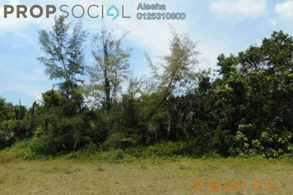 Land For Sale in Kampung Peramu Jaya Tiga, Pekan Freehold Unfurnished 0R/0B 260k
