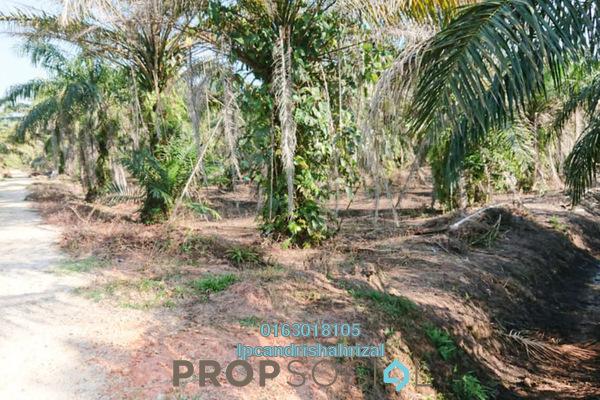 Land For Sale in Kampung Batu 2 Sepintas, Sabak Bernam Leasehold Unfurnished 0R/0B 200k