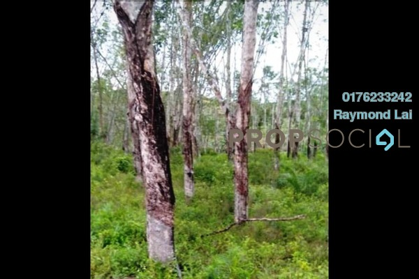 Land For Sale in Simpang Pertang, Jelebu Freehold Unfurnished 0R/0B 95k