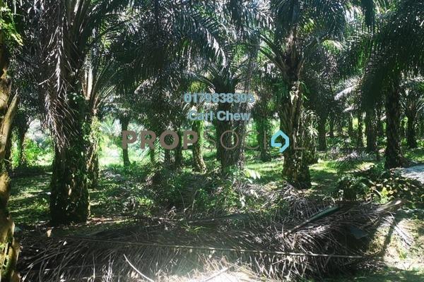 Land For Sale in Taman Daya, Bidor Freehold Unfurnished 0R/0B 780k