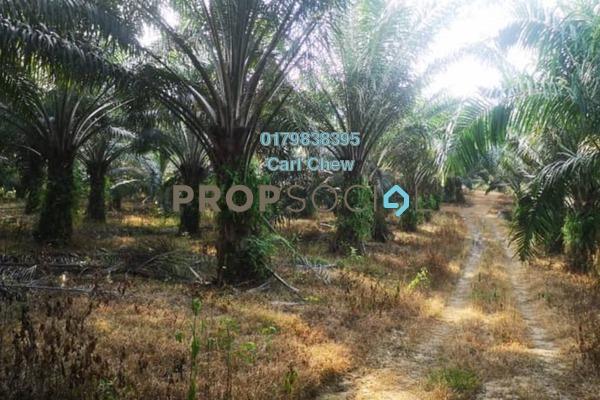 Land For Sale in Taman Daya, Bidor Freehold Unfurnished 0R/0B 850k