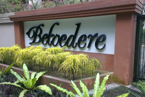 Belvedere's cover picture