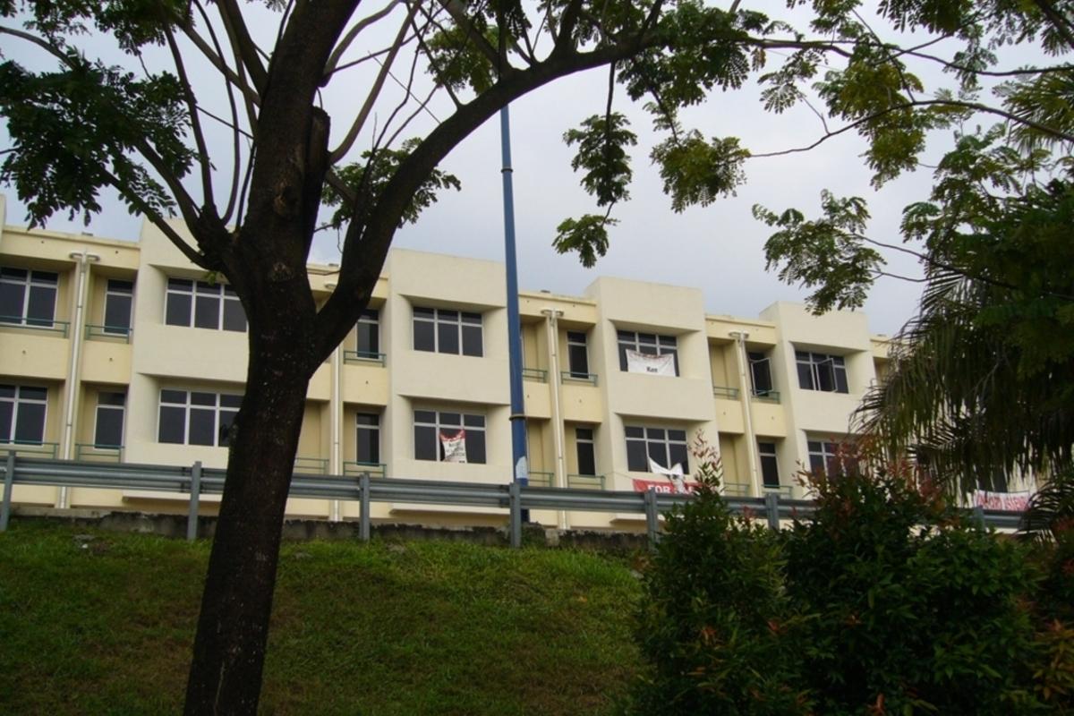 Taipan 1 Photo Gallery 2
