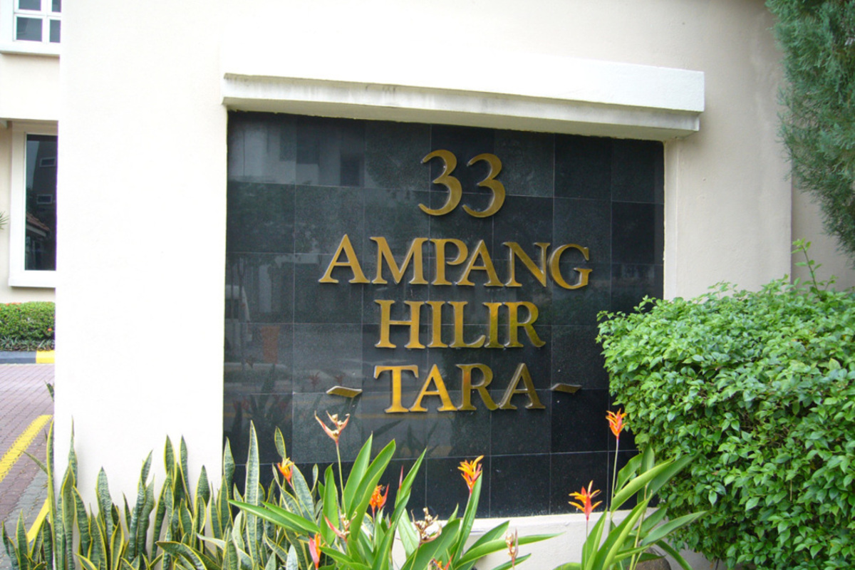 Tara Photo Gallery 1