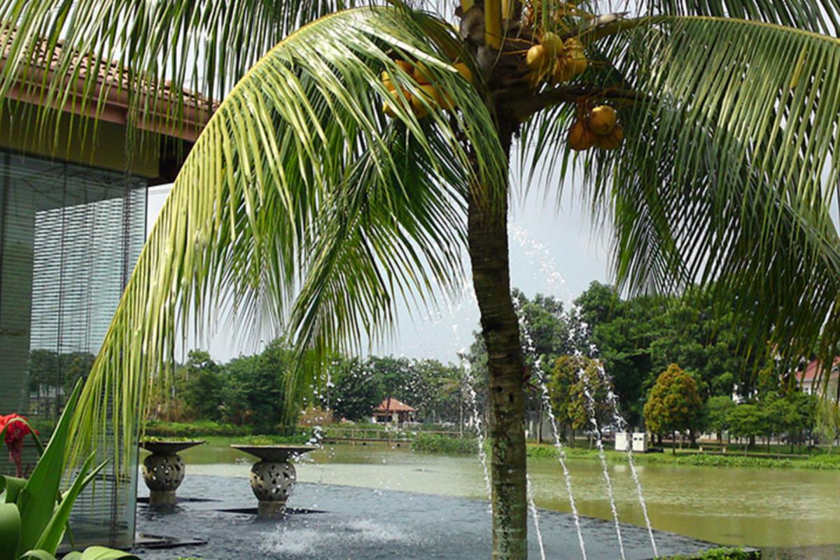 Bandar Botanic Photo Gallery 7