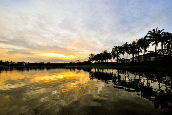 Kota Kemuning Hills's cover picture